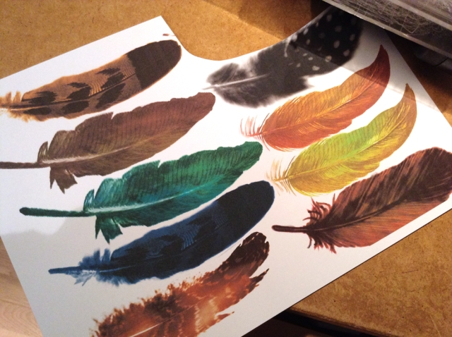 printable bird feathers